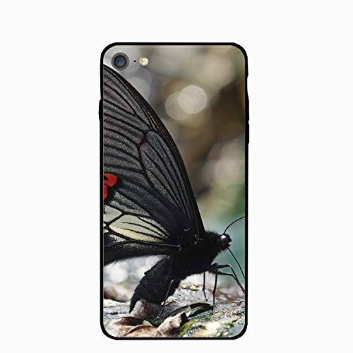 utterflys Papilio Maraho iPhone 6 Case, Thin Back Cover Soft Silicone Rubber Bumper Frame Support Wireless Charging Compatible iPhone 6 ()