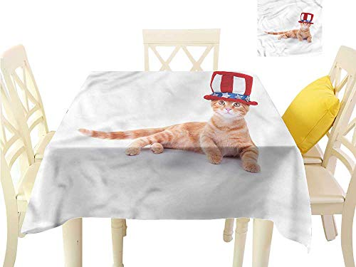 Davishouse Washable Table Cloth Cat Kitty USA Flag Hat Indoor Outdoor Camping Picnic W60 x L60
