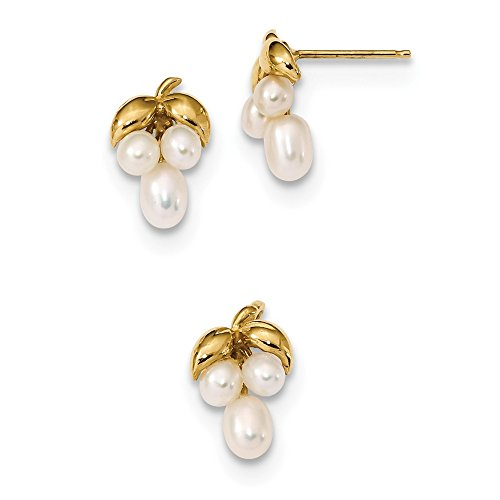 Roy Rose Jewelry 14k Yellow Gold 3-4mm White Rice Freshwater Cultured Grape-style Cluster Pearl Earring and Pendant Set -