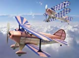 Pitts Special S1 Rubber Pwd. Airplane Laser Cut Kit Dumas