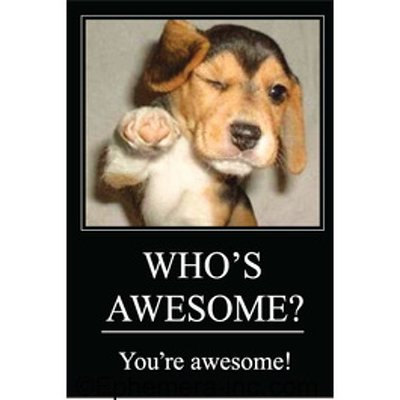 WHO'S AWESOME? You're awesome! - RECTANGLE MAGNET by