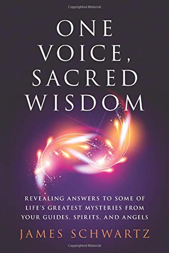 One Voice, Sacred Wisdom: Revealing Answers to Some of Life's Greatest Mysteries from Your Guides, Spirits and Angels PDF ePub fb2 book
