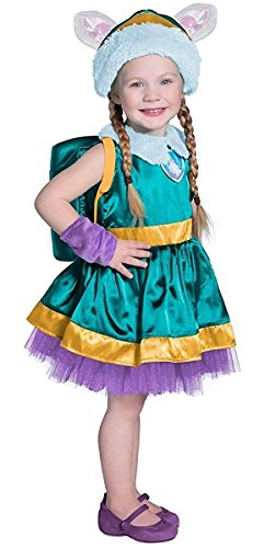 Princess Paradise Paw Patrol Everest Costume, Teal/Purple/Gold, (Everest Halloween Costume)