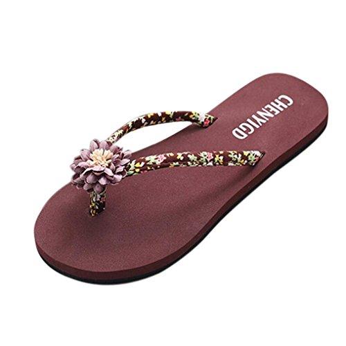 de Chanclas sandalias playa chanclas la delgadas sandalias Mujer baño de Verano zapatillas de LMMVP señoras Mujeres Marrón las ojotas zapatos r7q0rYw