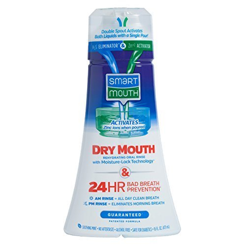 SmartMouth Dry Mouth Mouthwash, Mint, 16 Fluid Ounce (Best Mouthwash For Cigar Smokers)