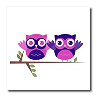 3dRose ht_60979_3 Baby Owls Perched on a Branch in Purple & Pink Iron on Heat Transfer Paper for White Material, 10 by 10""
