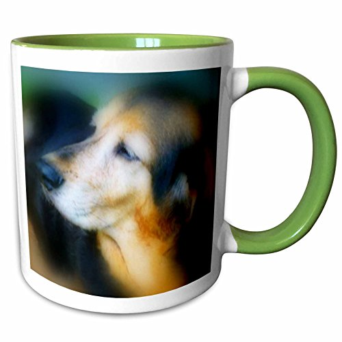 Hound Dog Sweet Tea - 3dRose Renderly Yours Dogs - Sweet Old Hound Dog - 11oz Two-Tone Green Mug (mug_111085_7)