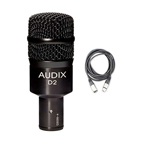 Audix D2 Dynamic Hypercardioid Instrument Microphone Bundle with Mic Cable, and Polishing Cloth