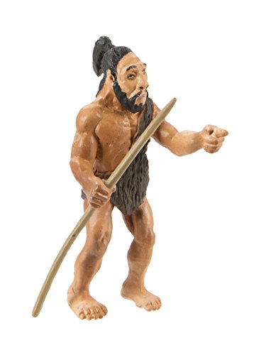 Safari Ltd Safariology Evolution Of Man Historical Toy