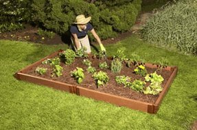 Raised Vegetable Garden (5.5 in. H) by Contech
