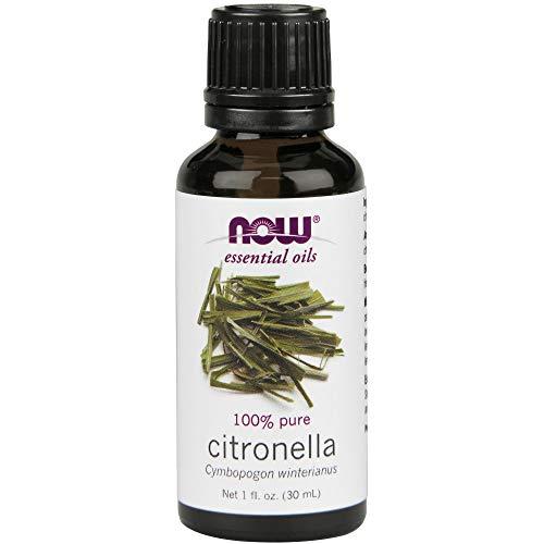 NOW Foods Essential Oils Citronella -- 1 fl oz