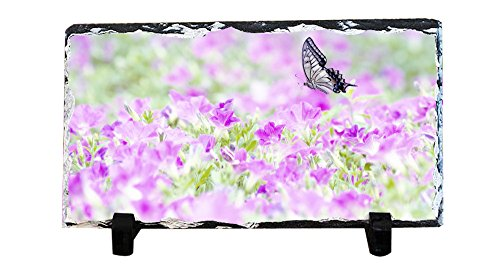 Swallowtail Butterfly Pictures - DKLZY Birthday Gift Personalized Picture Frames Photo Rock Slate Petunia and Asian Swallowtail Butterfly Photo Plaque Customized Photo Plaque