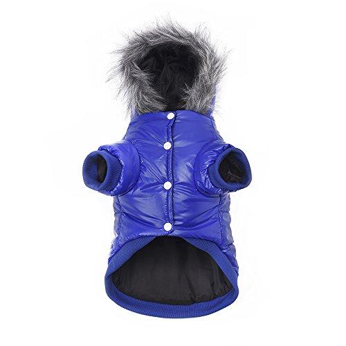 Namsan Pet Puppy Dog wasserfeste Kleidung und Winddichte Kapuzen Winter warme Kleidung Mantel Outwear -Blue -Medium