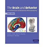 [(The Brain and Behavior: An Introduction to Behavioral Neuroanatomy)] [Author: David L. Clark] published on (June, 2010)