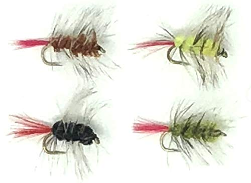 - Fly Fishing Wooly Worm Assortment Wet Streamer Flies - 24 Hand Tied Worms Black, Yellow, Green, and Brown