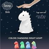 Adorable Global Tommy Dinosaur TIK Tok Multicolor