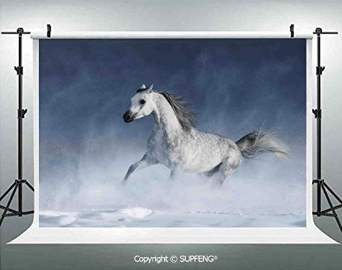 Photography Backdrops Arabian Horse Galloping During a Snowstorm