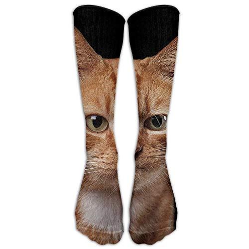 Holuday Long Dress Socks Cotton Orange Cat Kitten Sport Comfortable Breathable Over-the-Calf Tube