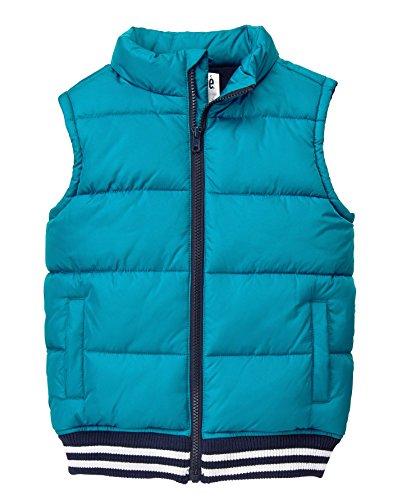 - Gymboree Boys' Little Chambray Vest, Blue, M
