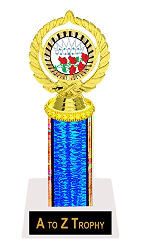 Beauty Pageant Trophy Awards 9