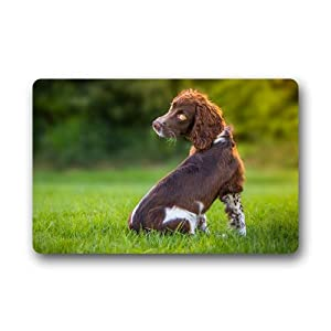 CustomLittleHome Sussex Spaniel Puppy Custom Doormats Rug Non Slip Mats Indoor/Outdoor/Bathroom/Decor Area Rug(23.6x15.7 inch) 4