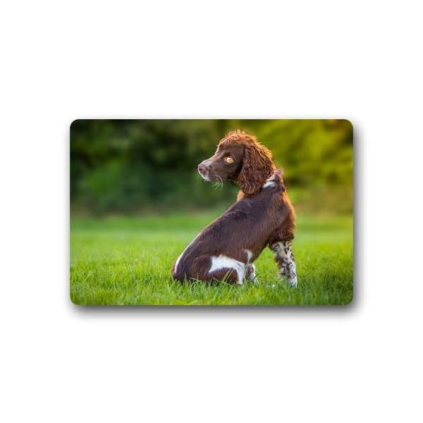 CustomLittleHome Sussex Spaniel Puppy Custom Doormats Rug Non Slip Mats Indoor/Outdoor/Bathroom/Decor Area Rug(23.6x15.7 inch) 1
