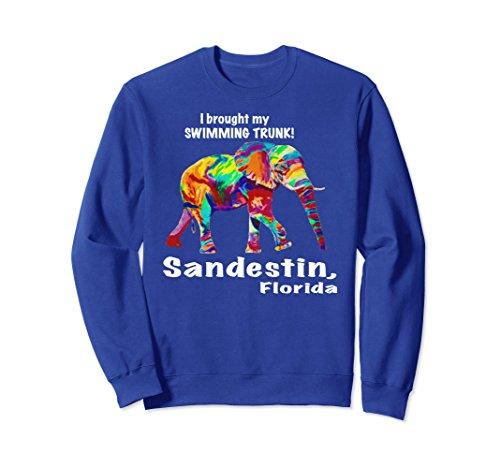 Unisex Rainbow Elephant, Sandestin, Florida beach tee shirt 2XL Royal - Florida Sandestin