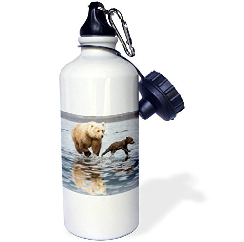 3dRose Danita Delimont - Baby animals - Coastal Grizzly bear mother and cubs running, Lake Clark NP, Alaska. - 21 oz Sports Water Bottle (wb_278403_1) by 3dRose