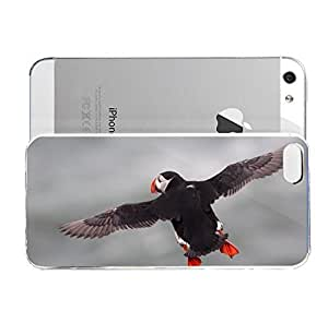 iPhone 5&5S cover case Animals Atlantic Puffin Flying Bird