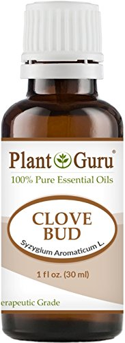 Clove Bud Essential Oil 1 oz / 30 ml 100% Pure Undiluted The