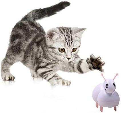 KOBWA - Juguete automático para ratón y Gato, Juguete para Gatito ...