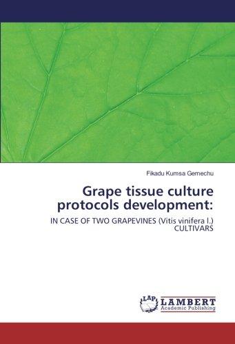 Grape tissue culture protocols development:: IN CASE OF TWO GRAPEVINES (Vitis vinifera l.) CULTIVARS
