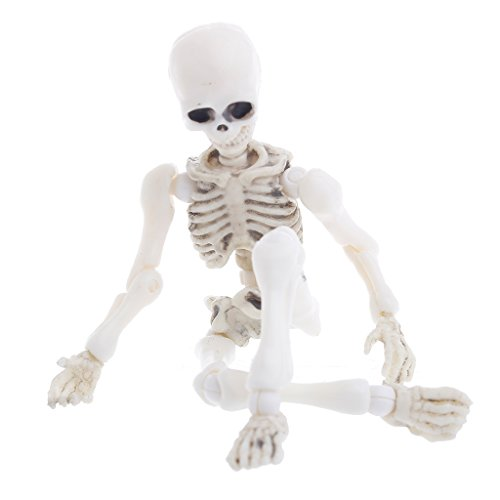 Mr. Bones Skeleton,Yeahii Movable Human Model Skull Full Body Mini Figure Toy Halloween]()