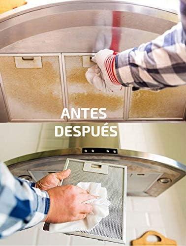 Desengrasante industrial neutro limpiador profesional de superficies ideal para la limpieza de azulejos, paredes lavables, suelos, mesas, cocinas producto biodegradable gama eco envase de 1 litro: Amazon.es: Salud y cuidado personal
