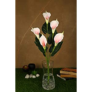 PolliNation Real Touch Pink Callalily Artificial Flower for Home Decoration (Pack of 1, 34 INCH)