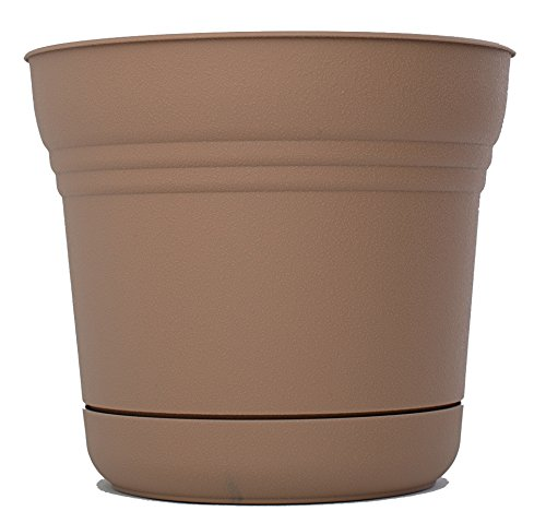 bloem-sp0518-saturn-planter-5-inch-curated