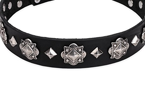 FDT Artisan 17 inch 'Code of Chivalry Embellished Black Leather Dog Collar - 1 1/2 inch (40 mm)