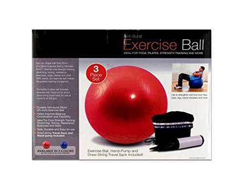 Plastic Rubber Exercise Ball with Pump
