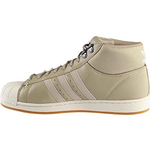 Adidas Pro Model Bt Marrone