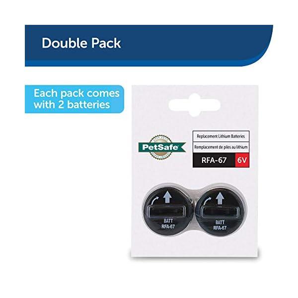 PetSafe RFA-67 6 Volt Replacement Batteries 2