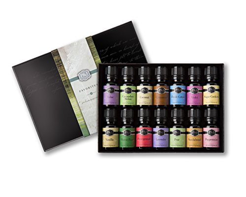 P&J Trading Favorites Set of 14 Premium Grade Fragrance Oils - 10ml (Best Scents For Candle Making)