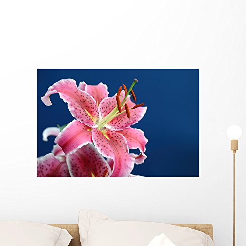 Wallmonkeys Pink Stargazer Lily Wall Mural Peel Stick Floral Graphic (24 in W x 16 in H) WM64648