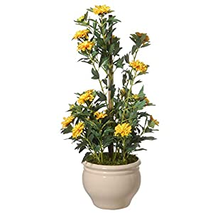 "CC Christmas Decor 20"" Potted Yellow Zinnia Flowers 12"