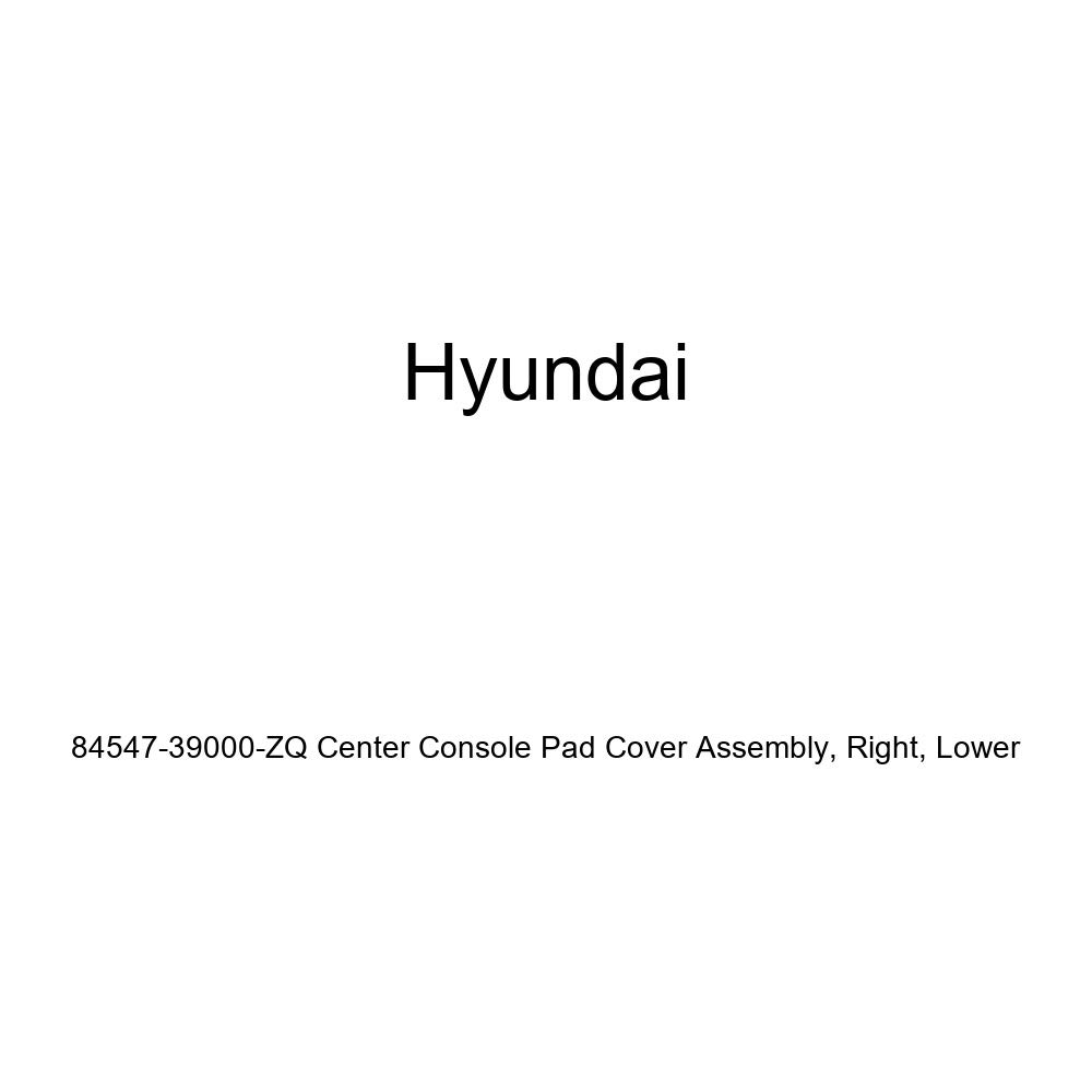 Lower Genuine Hyundai 84547-39000-ZQ Center Console Pad Cover Assembly Right