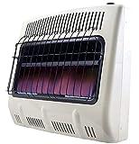 Mr. Heater 30K BTU Blue Flame Vent Free Heater with Blower & 12ft Regulator Hose Kit
