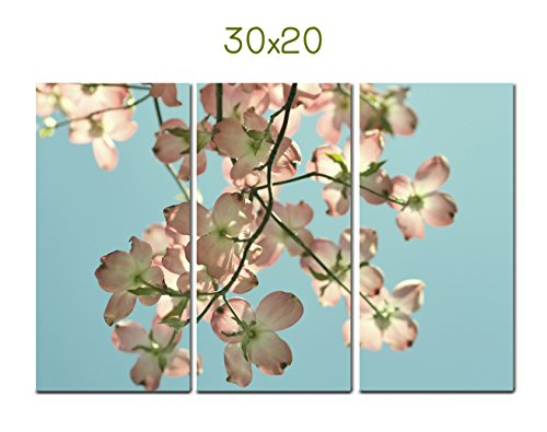 3 Piece Wall Art for Living Room or Bedroom, Blue, Ivory Pink Floral Tree Branch 3 Piece Wall Decor 18x36, 20x30, 24x36, 30x45 Nature Photography