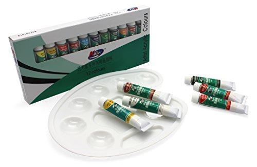 miy artist acrylic paint set