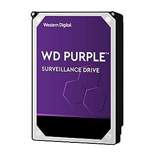 """WD Purple 10TB Surveillance Internal Hard Drive - 7200 RPM Class, SATA 6 Gb/s, , 256 MB Cache, 3.5"""" - WD101PURZ (Old Version)"""
