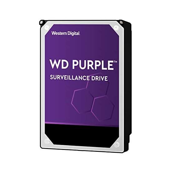 """WD Purple 10TB Surveillance Hard Drive - 7200 RPM Class, SATA 6 Gb/s, 256 MB Cache, 3.5"""" - WD101PURZ 41RCVCZWjML. SS555"""