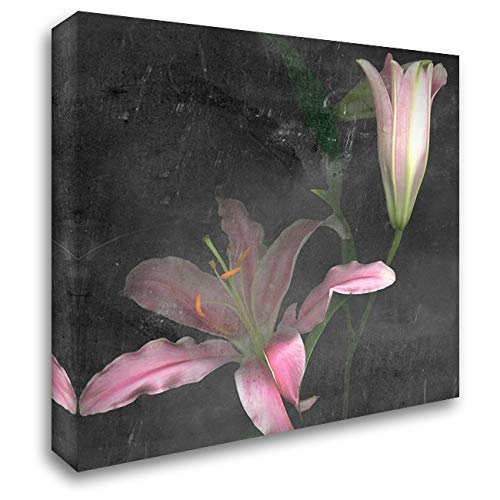 Fleur de LYS II 20x20 Gallery Wrapped Stretched Canvas Art by Ludwig, Alicia